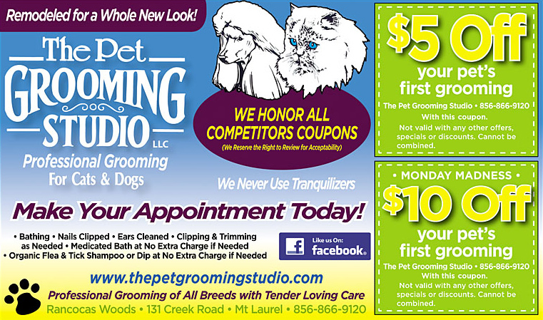 The Pet Grooming Studio - Coupon